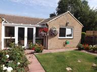 Semi-Detached Bungalow in Cypress Way, Frome
