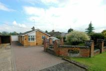 Bungalow in Rothersthorpe