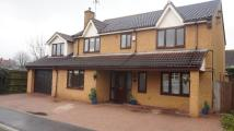 5 bed Detached home for sale in Willowbrook Drive, PE7