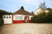 3 bed Detached Bungalow for sale in Great Cambridge Road...