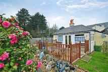 2 bed Bungalow in Morton Road, Brading