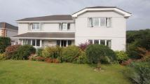 4 bed Detached property for sale in Grove Parc...