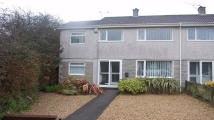 End of Terrace house to rent in Gannett Drive, St Austell