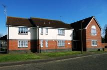 1 bed Ground Flat to rent in Elizabeth Road...