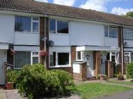 Terraced house to rent in Ditchingham Close...