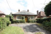 Detached Bungalow for sale in Tylers Hill Road, Botley...