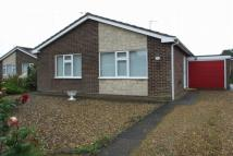 Detached Bungalow in Highgrove, Long Sutton...
