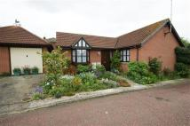 2 bed Bungalow in Longacre, Colchester
