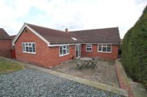 Bungalow for sale in North Wheatley, Retford...