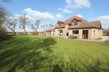 4 bedroom Detached house in Todwick, Sheffield...