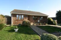 Detached Bungalow in Ladycross Close, Seaford...
