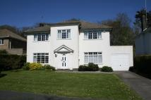 Detached house in Harison Road, Seaford...