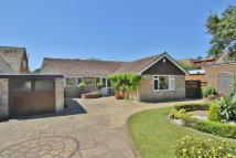3 bedroom Detached Bungalow in Carlton Road, Seaford...