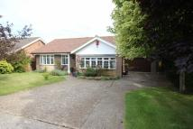 3 bed Detached Bungalow for sale in Upper Belgrave Road...
