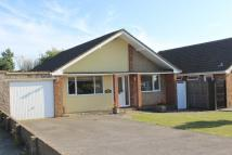 Detached Bungalow for sale in Stirling Avenue, SEAFORD...