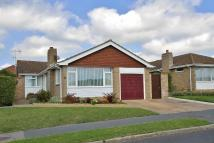 Detached Bungalow for sale in Quarry Lane, Seaford...