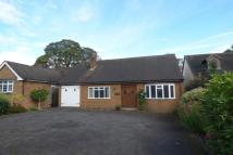 2 bed Detached Bungalow in Charnwood Close...