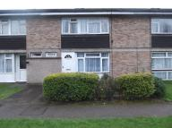 3 bed Terraced home in Wood Common, Hatfield...