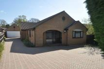 4 bed Detached Bungalow in Lake Road, Verwood