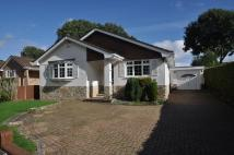 Detached Bungalow to rent in Dewlands Way, Verwood