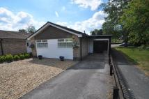 Bungalow for sale in Jessica Avenue, Verwood
