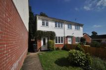 Owls Road semi detached house to rent