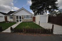 3 bedroom Bungalow to rent in Compton Beeches, St Ives...