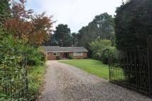 Detached Bungalow to rent in Highwood Close...