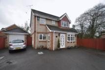 Detached home in Lin Brook Drive, Ringwood