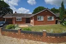 3 bedroom Bungalow for sale in Noon Gardens, Verwood