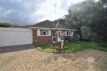 3 bedroom Detached Bungalow in Beech Close, Verwood
