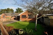 Lavender Close Detached Bungalow to rent