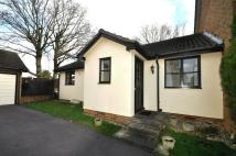 Two Detached house to rent