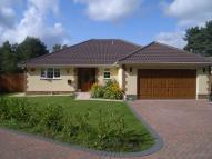 Detached Bungalow for sale in St, Leonards