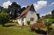 3 bedroom Character Property for sale in FERNDOWN