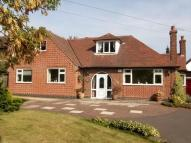 Detached property for sale in Bostocks Lane, Sandiacre...