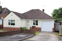 Bungalow in Esher Close, Basingstoke