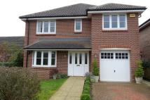 house to rent in Reading Road, Chineham...