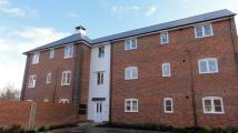 new Apartment in Bury St Edmunds