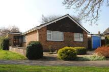 Bury Detached Bungalow to rent