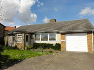 Detached Bungalow to rent in Barrow, Suffolk