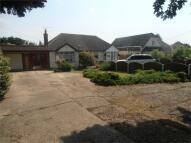 Lodge Lane Semi-Detached Bungalow for sale