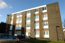 1 bedroom Flat to rent in St Just Place...