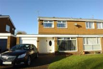 3 bedroom semi detached house in Pelham Court...