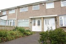 3 bed Terraced home to rent in Faversham Court...