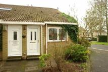 1 bed Terraced Bungalow for sale in Brandling Drive...