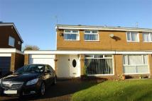 3 bedroom semi detached property for sale in Pelham Court...