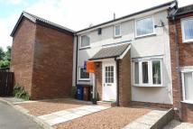 2 bed Terraced house to rent in Stuart Court...