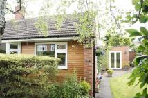 Semi-Detached Bungalow in Woodhorn Gardens...