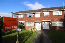 Shannon Court Terraced property to rent